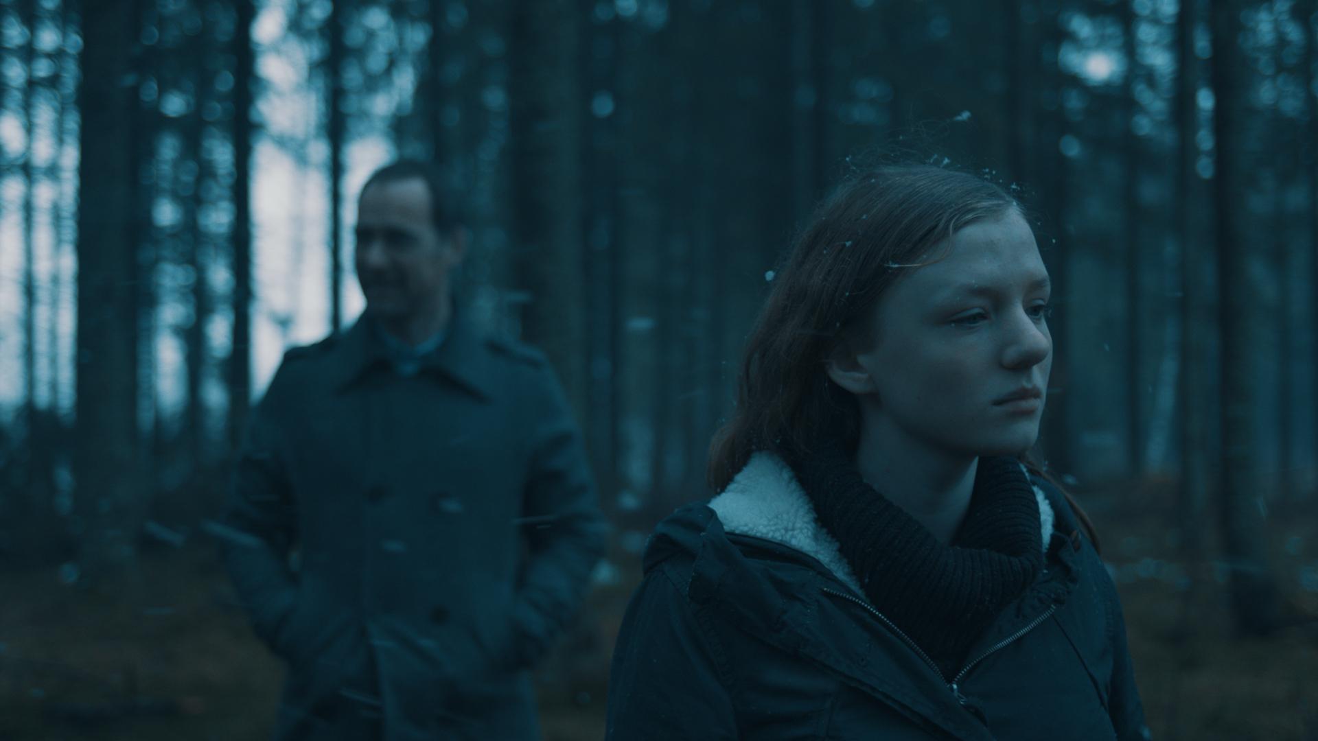 Agg M og P i skog